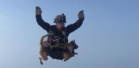 Kopassus terjun bawa anjing