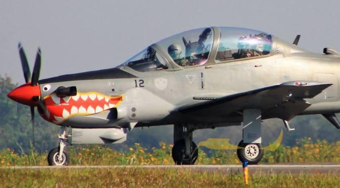 AS Kembali Jual Pesawat Tempur ke Nigeria
