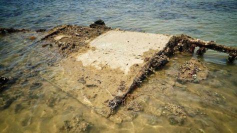 Sayap pesawat pengebom B-25 Mitchell yang jatuh di lepas pantai Darwin selama Perang Dunia II. (ABC)