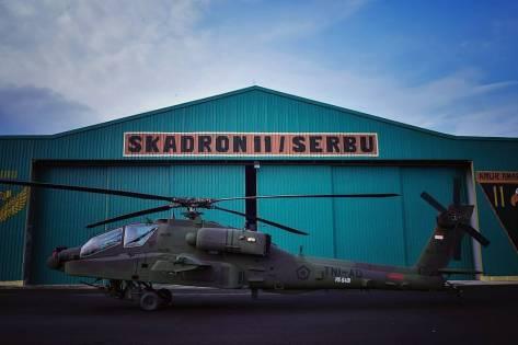 Apache TNI AD (Defence.pk)